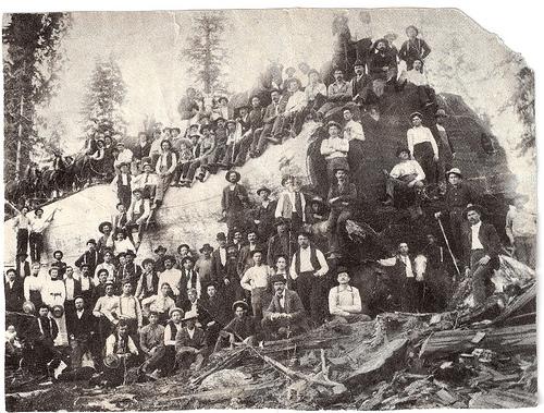 gold rush california images. images California Gold Rush