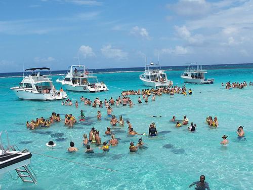 Image result for stingrays tourism