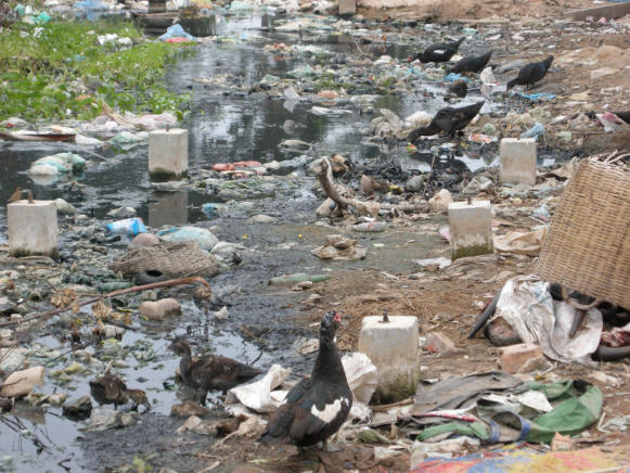 http://bioweb.uwlax.edu/bio203/s2009/meinhard_jaso/polluted%20water.jpg
