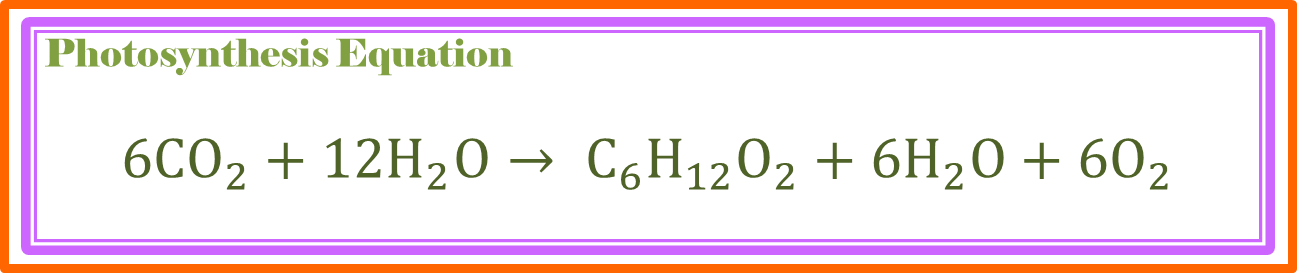 equation for photsynthesis