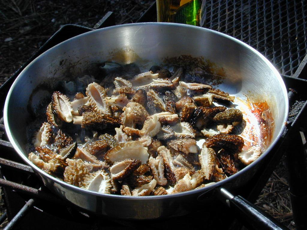 Morel Mushroom Recipes