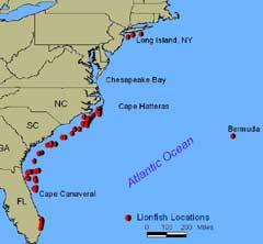 Atlantic Ocean Map Us Pterois miles  Habitat